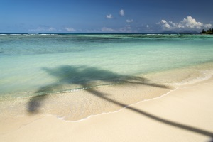 Urlaubsanspruch Bei Fristloser Kündigung Das Gilt
